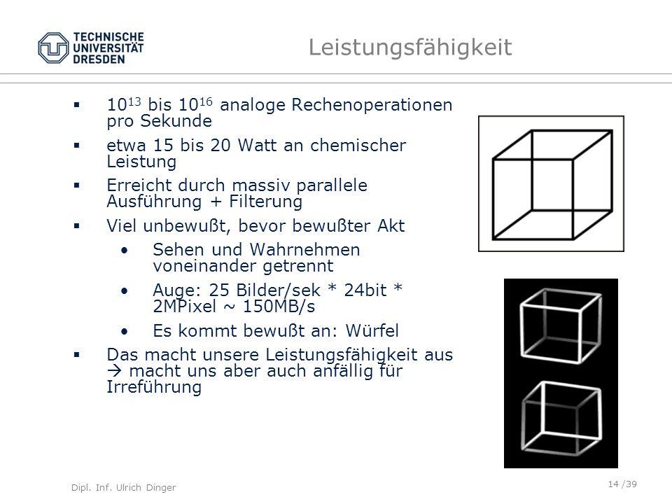 Dipl. Inf. Ulrich Dinger /39 Leistungsfähigkeit 10 13 bis 10 16 analoge Rechenoperationen pro Sekunde etwa 15 bis 20 Watt an chemischer Leistung Errei