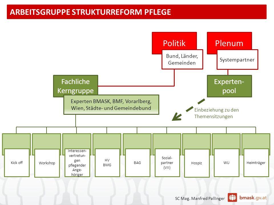 PlenumPolitik Bund, Länder, Gemeinden Systempartner Experten- pool Fachliche Kerngruppe Experten BMASK, BMF, Vorarlberg, Wien, Städte- und Gemeindebun