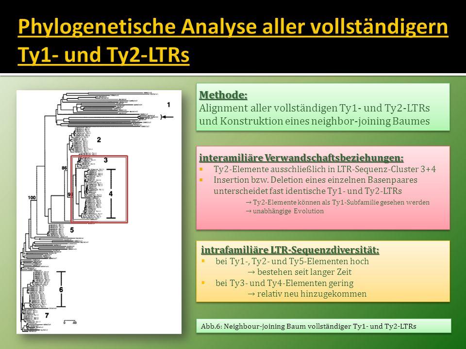 Methode: Alignment aller vollständigen Ty1- und Ty2-LTRs und Konstruktion eines neighbor-joining BaumesMethode: interamiliäre Verwandschaftsbeziehunge
