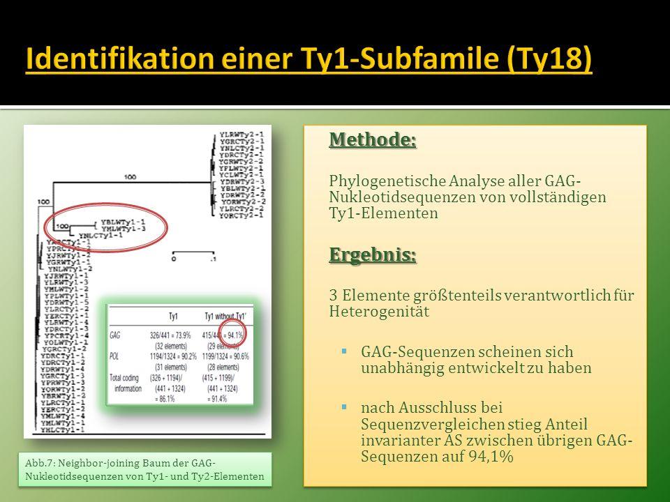 Methode: Phylogenetische Analyse aller GAG- Nukleotidsequenzen von vollständigen Ty1-ElementenErgebnis: 3 Elemente größtenteils verantwortlich für Het