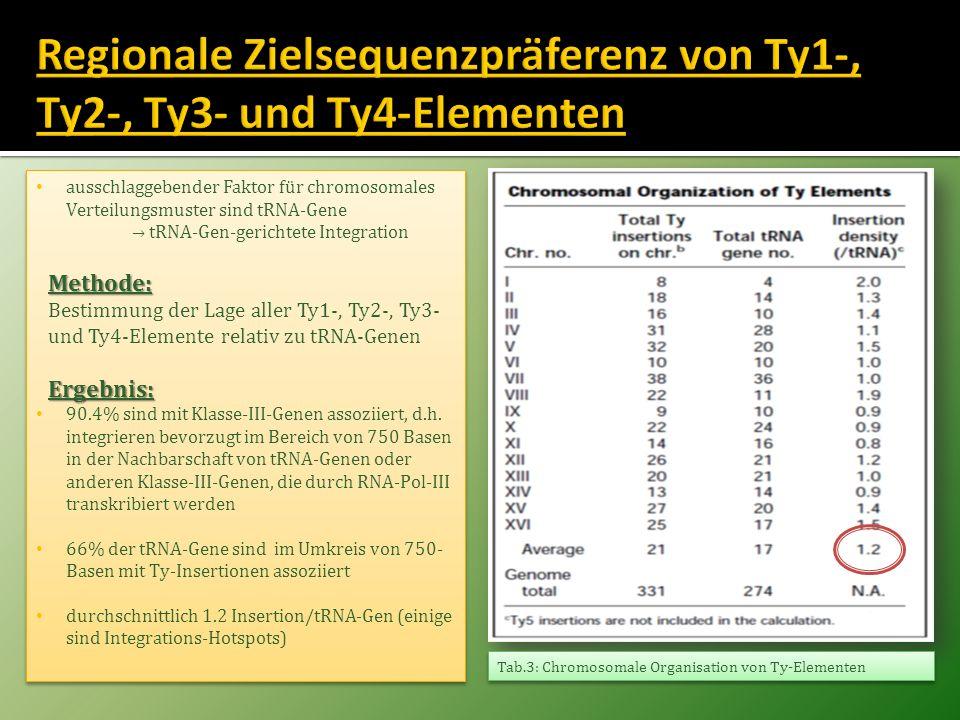 ausschlaggebender Faktor für chromosomales Verteilungsmuster sind tRNA-Gene tRNA-Gen-gerichtete IntegrationMethode: Bestimmung der Lage aller Ty1-, Ty