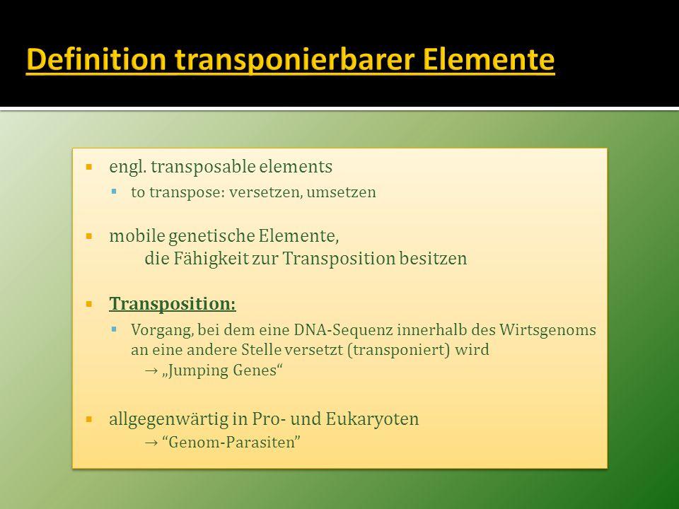 engl. transposable elements to transpose: versetzen, umsetzen mobile genetische Elemente, die Fähigkeit zur Transposition besitzen Transposition: Vorg