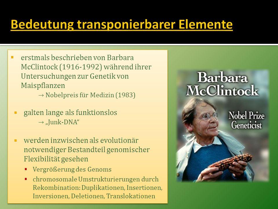 erstmals beschrieben von Barbara McClintock (1916-1992) während ihrer Untersuchungen zur Genetik von Maispflanzen Nobelpreis für Medizin (1983) galten