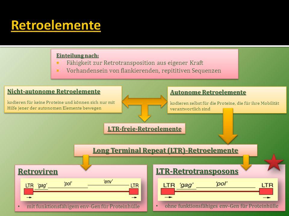 Einteilung nach: Fähigkeit zur Retrotransposition aus eigener Kraft Vorhandensein von flankierenden, repititiven Sequenzen Einteilung nach: Fähigkeit