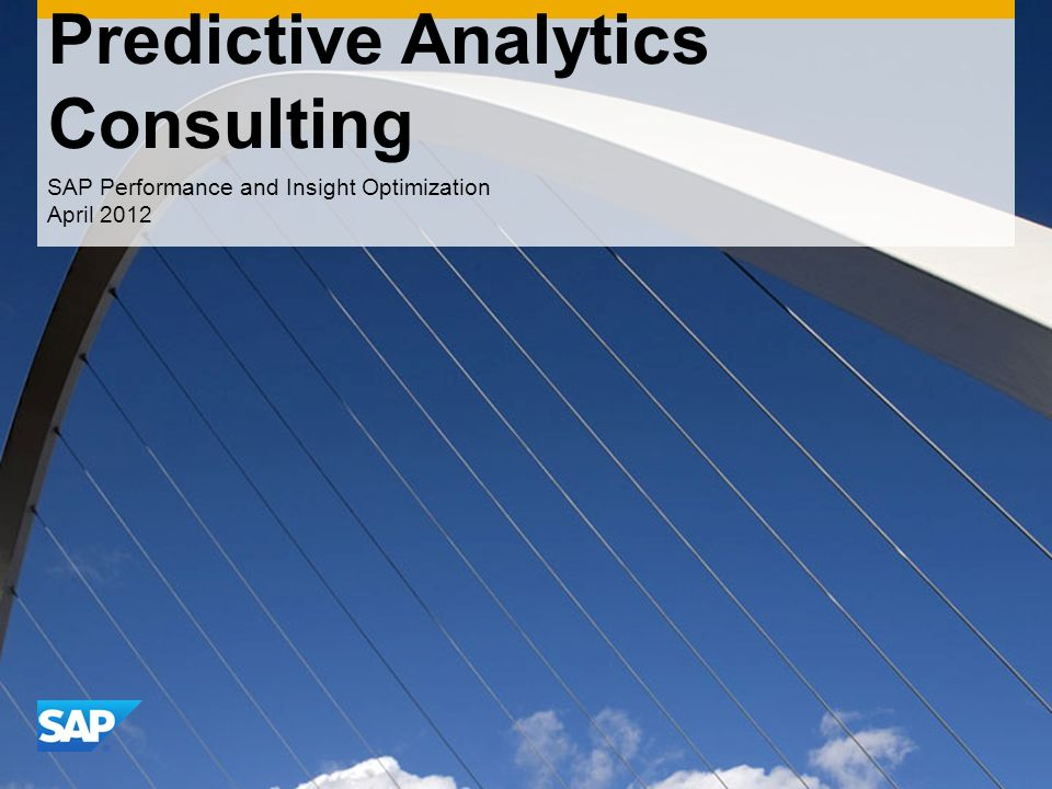 CONFIDENTIAL Predictive Analytics Consulting SAP Performance and Insight Optimization April 2012