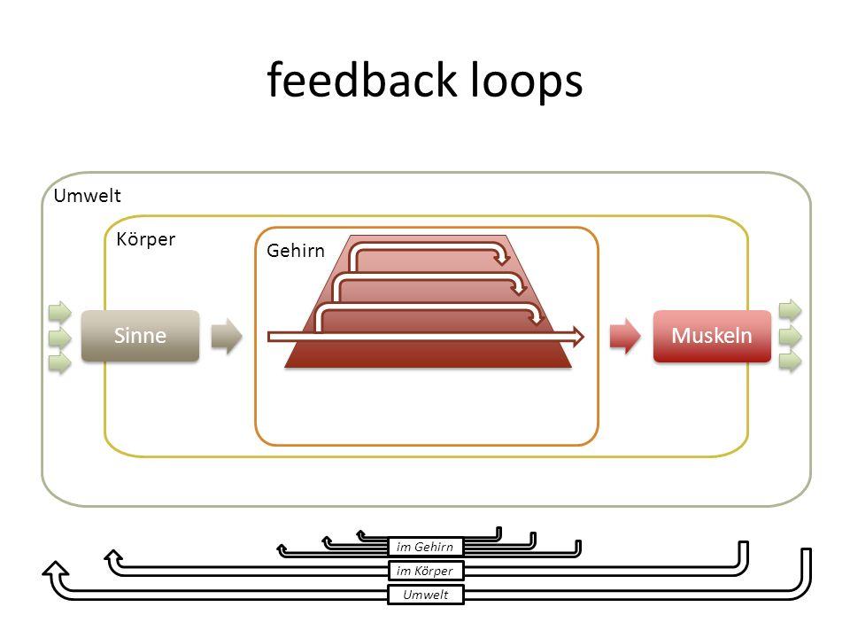 feedback loops Umwelt Körper Sinne Gehirn Muskeln Umwelt im Körper im Gehirn