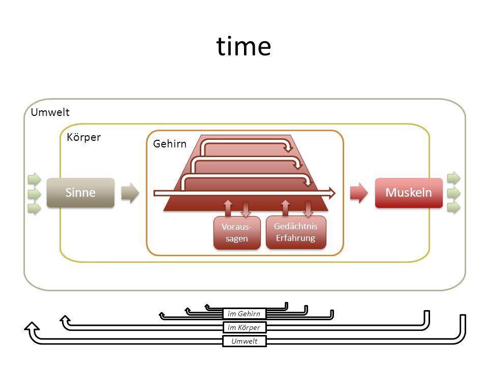 time Umwelt Körper Sinne Gehirn Muskeln Umwelt im Körper im Gehirn Gedächtnis Erfahrung Voraus- sagen