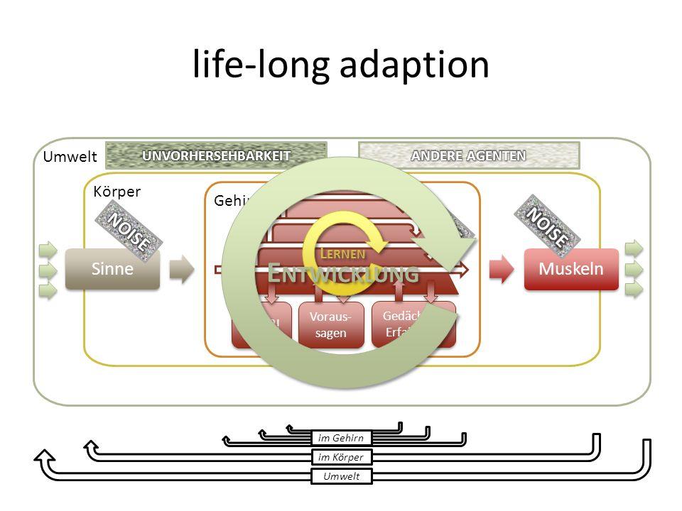 Umwelt Körper Sinne Gehirn Muskeln Umwelt im Körper im Gehirn Gedächtnis Erfahrung Wille?! Voraus- sagen L ERNEN E NTWICKLUNG life-long adaption