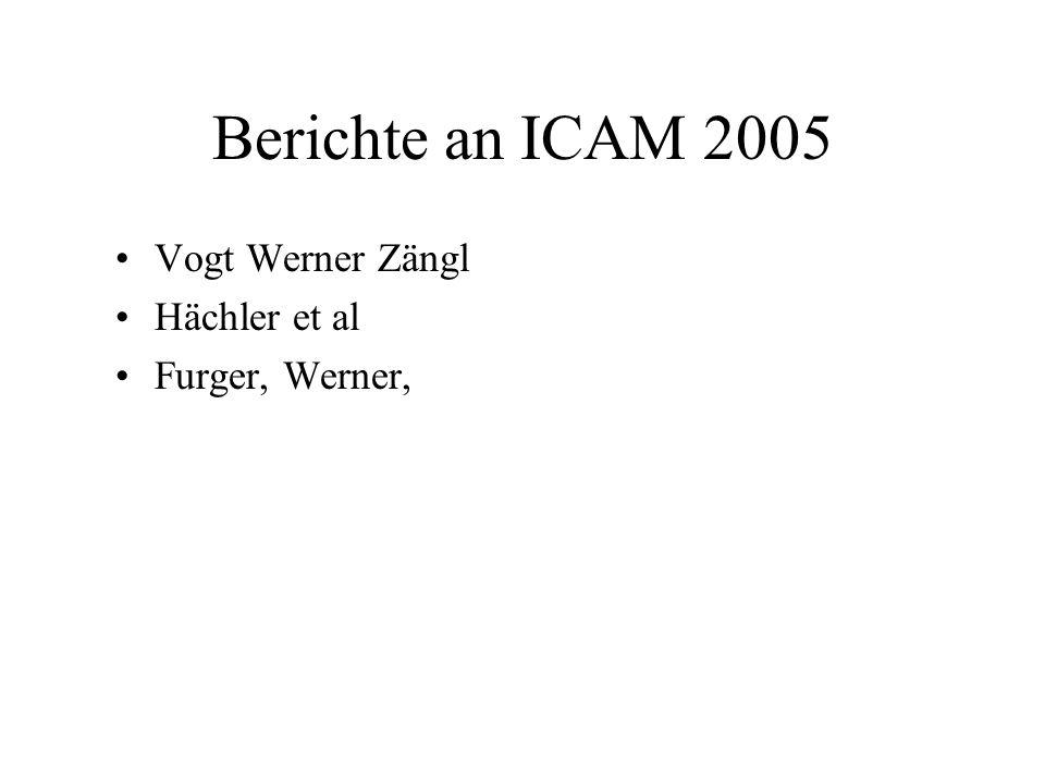 Berichte an ICAM 2005 Vogt Werner Zängl Hächler et al Furger, Werner,