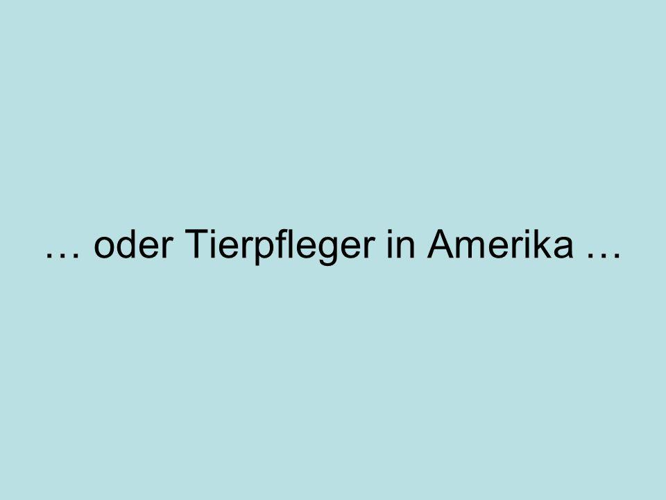 … oder Tierpfleger in Amerika …