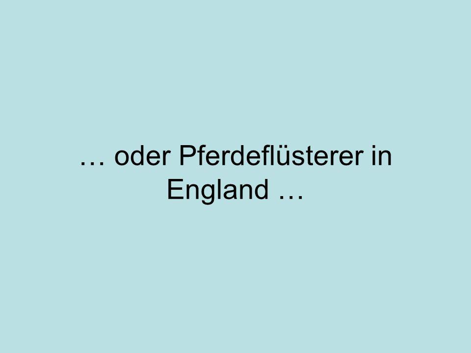 … oder Pferdeflüsterer in England …