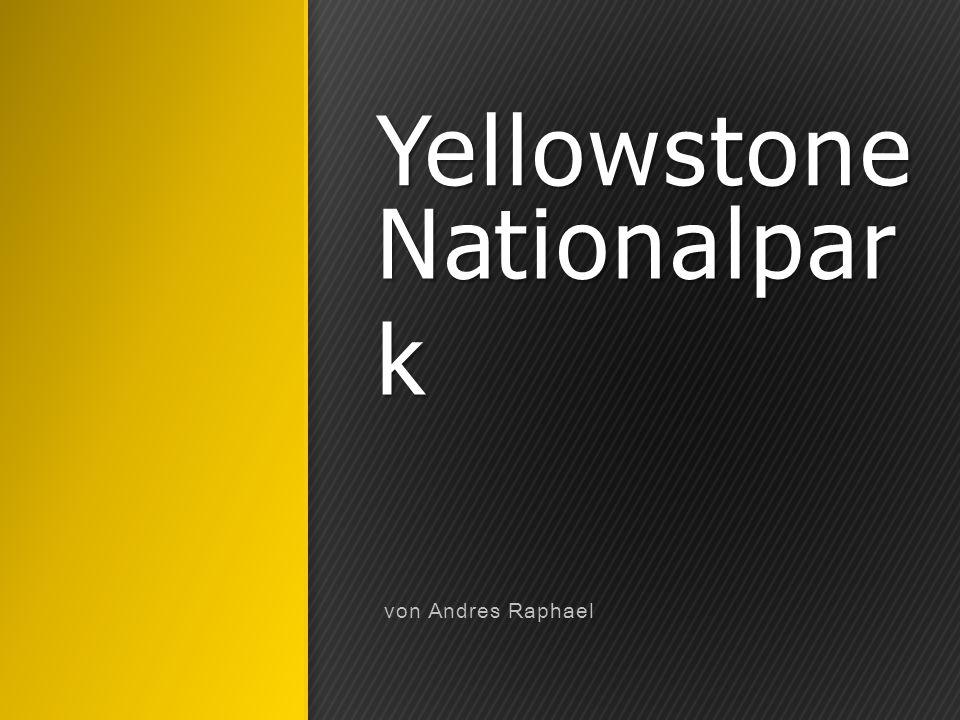 Inhaltsverzeichnis Geschichte Geografie und Geologie Klima Vegetation, Flora und Fauna Thermophile Bakterien und Algen Naturschutz und Bedeutung Waldbrand im Yellowstone Tourismus Yellowstone River