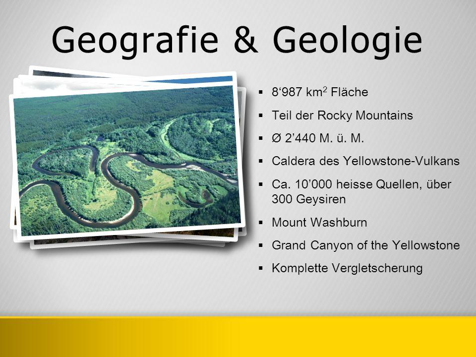 Geografie & Geologie 8987 km 2 Fläche Teil der Rocky Mountains Ø 2440 M. ü. M. Caldera des Yellowstone-Vulkans Ca. 10000 heisse Quellen, über 300 Geys