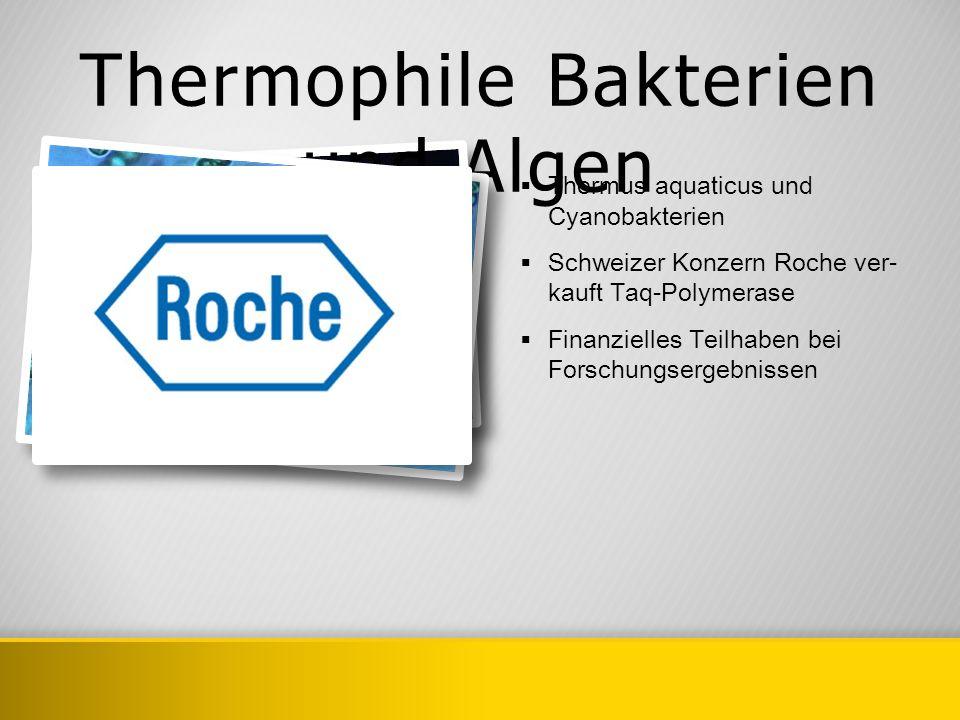 Thermophile Bakterien und Algen Thermus aquaticus und Cyanobakterien Schweizer Konzern Roche ver- kauft Taq-Polymerase Finanzielles Teilhaben bei Fors