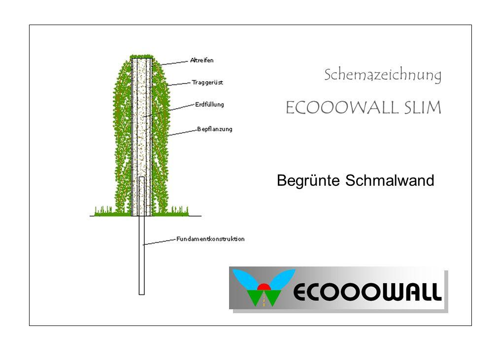 Begrünte Schmalwand Schemazeichnung ECOOOWALL SLIM
