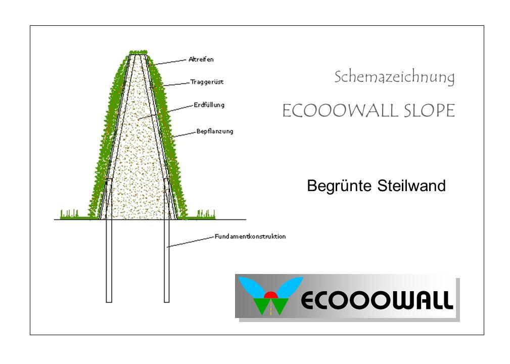 Schemazeichnung ECOOOWALL SLOPE Begrünte Steilwand