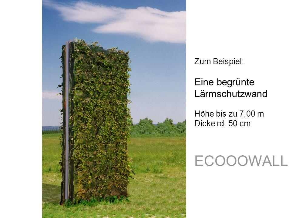 ECOOOWALL Zum Beispiel: Eine begrünte Lärmschutzwand Höhe bis zu 7,00 m Dicke rd. 50 cm