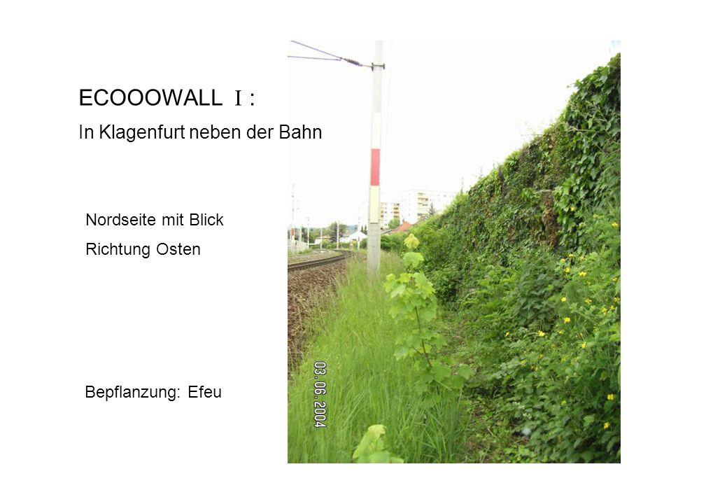 ECOOOWALL I : In Klagenfurt neben der Bahn Nordseite mit Blick Richtung Osten Bepflanzung: Efeu