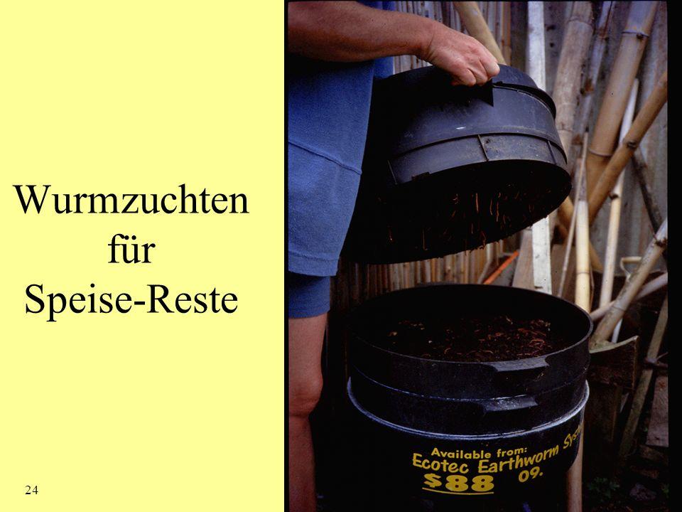Kompost 24 Wurmzuchten für Speise-Reste