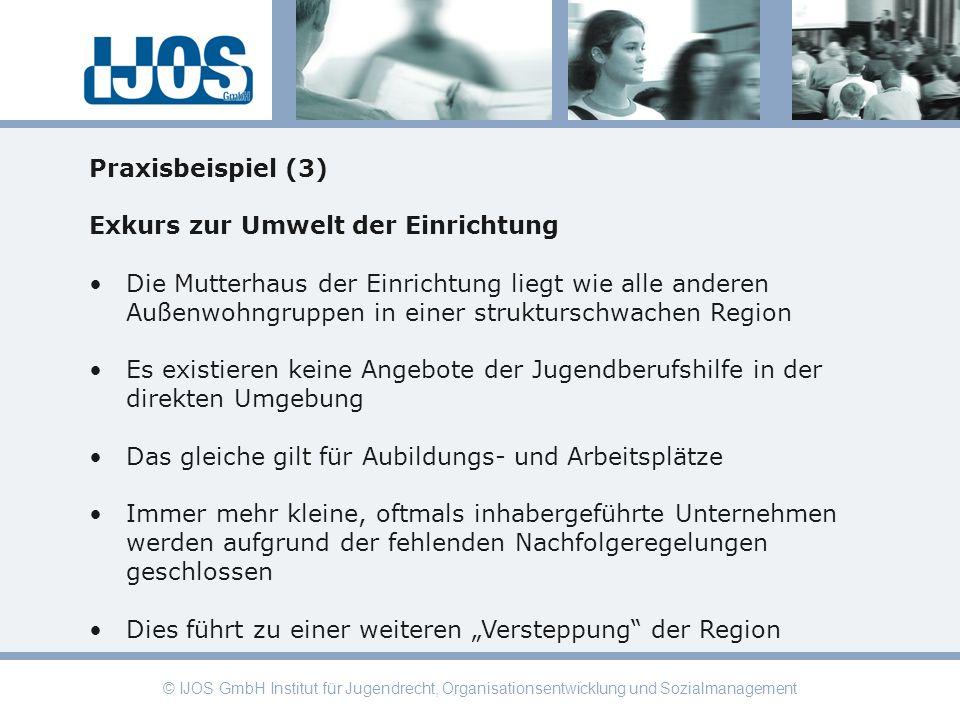 © IJOS GmbH Institut für Jugendrecht, Organisationsentwicklung und Sozialmanagement Praxisbeispiel (3) Exkurs zur Umwelt der Einrichtung Die Mutterhau