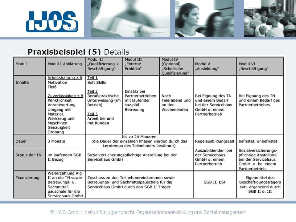 © IJOS GmbH Institut für Jugendrecht, Organisationsentwicklung und Sozialmanagement Praxisbeispiel (5) Details