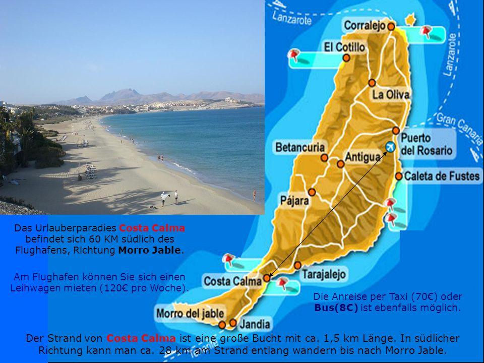 Die Strandsaison auf Fuerteventura dauert das runde Jahr. Man kann und baden jederzeit des Jahres hier braun werden, an der übermäßigen Hitze sogar in