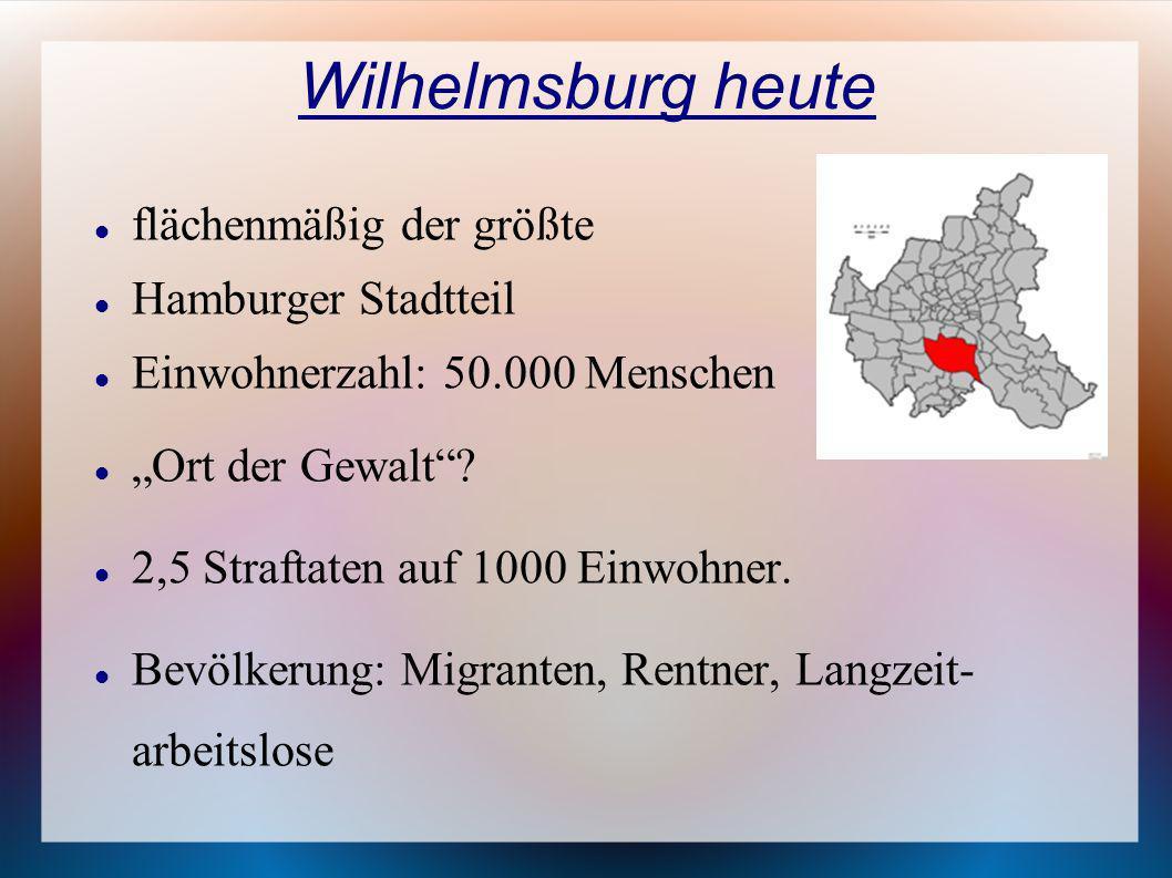 Wilhelmsburg heute flächenmäßig der größte Hamburger Stadtteil Einwohnerzahl: 50.000 Menschen Ort der Gewalt? 2,5 Straftaten auf 1000 Einwohner. Bevöl