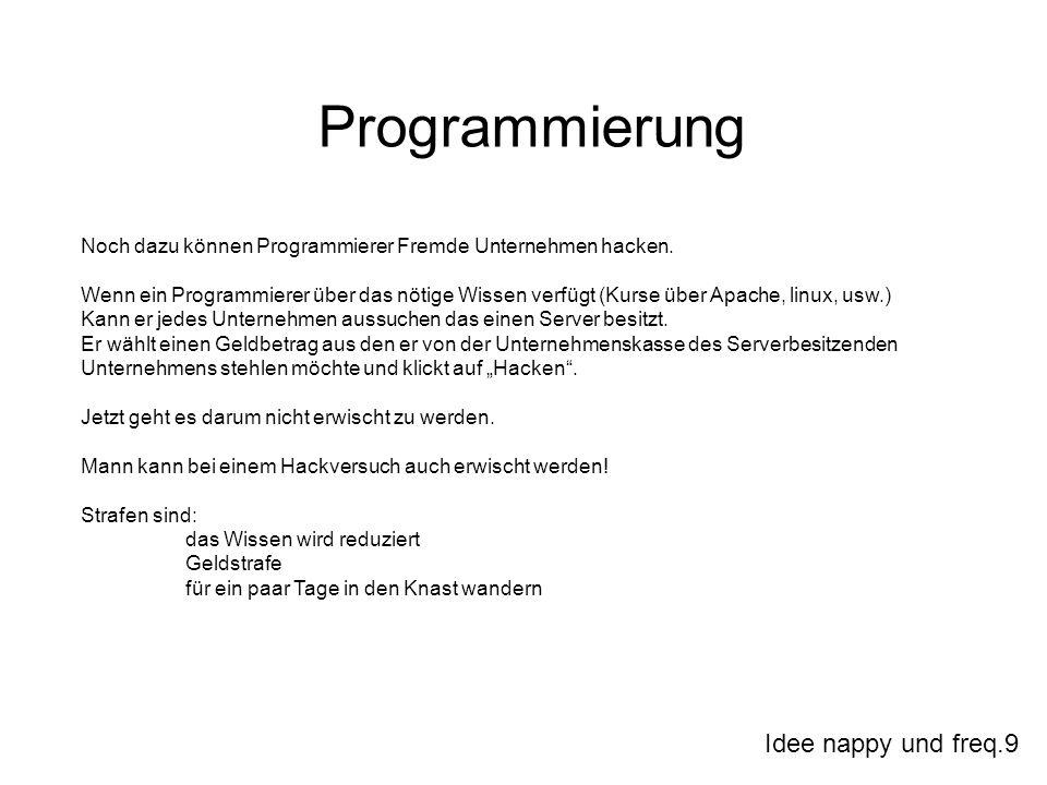 Idee nappy und freq.9 Programmierung Noch dazu können Programmierer Fremde Unternehmen hacken. Wenn ein Programmierer über das nötige Wissen verfügt (