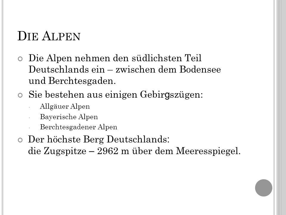 D IE A LPEN Die Alpen nehmen den südlichsten Teil Deutschlands ein – zwischen dem Bodensee und Berchtesgaden.
