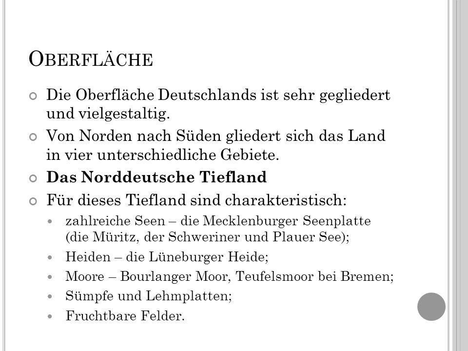 O BERFLÄCHE Die Oberfläche Deutschlands ist sehr gegliedert und vielgestaltig.
