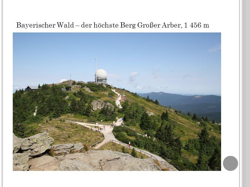 Bayerischer Wald – der höchste Berg Großer Arber, 1 456 m