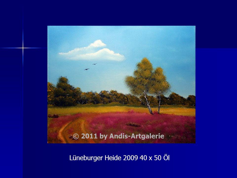 Lüneburger Heide 2009 40 x 50 Öl © 2011 by Andis-Artgalerie