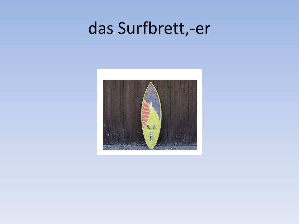das Surfbrett,-er