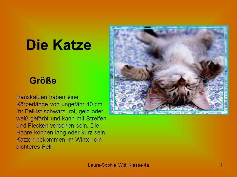 Laura-Sophie Witt, Klasse 4a1 Die Katze Größe Hauskatzen haben eine Körperlänge von ungefähr 40 cm. Ihr Fell ist schwarz, rot, gelb oder weiß gefärbt