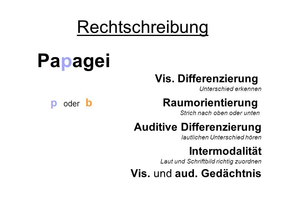Rechtschreibung Papagei Vis. Differenzierung Unterschied erkennen p oder b Raumorientierung Strich nach oben oder unten Auditive Differenzierung lautl