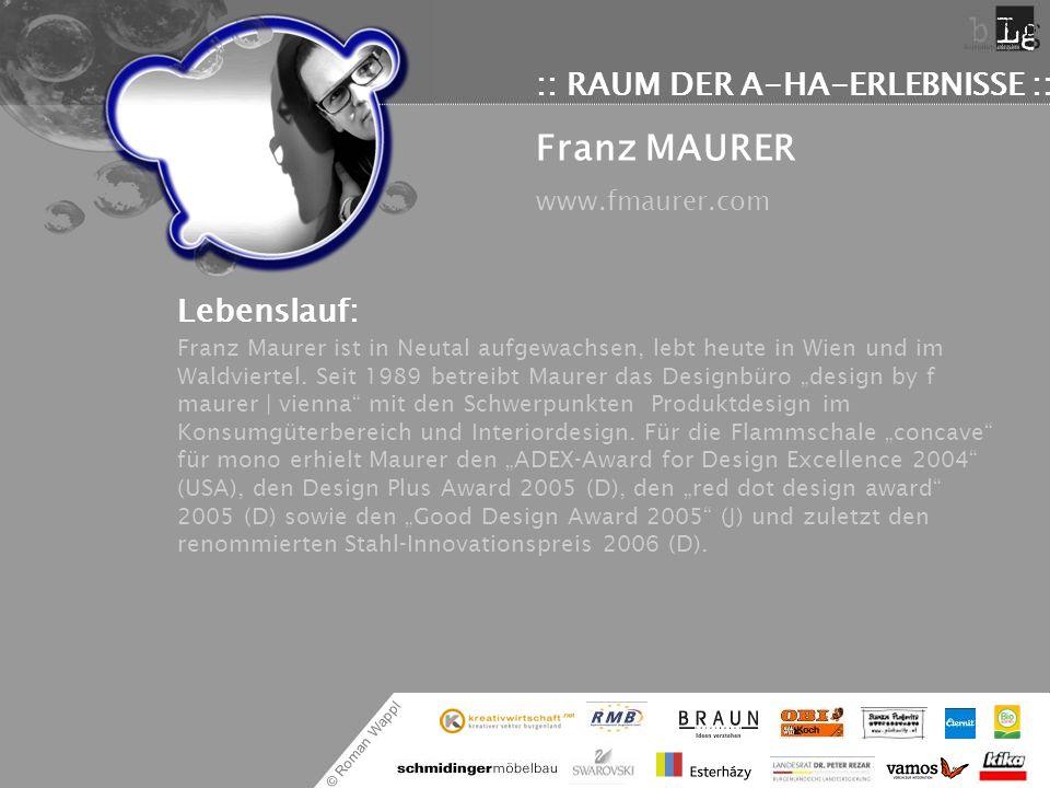 © Roman Wappl :: RAUM DER A-HA-ERLEBNISSE :: Franz MAURER www.fmaurer.com Lebenslauf: Franz Maurer ist in Neutal aufgewachsen, lebt heute in Wien und