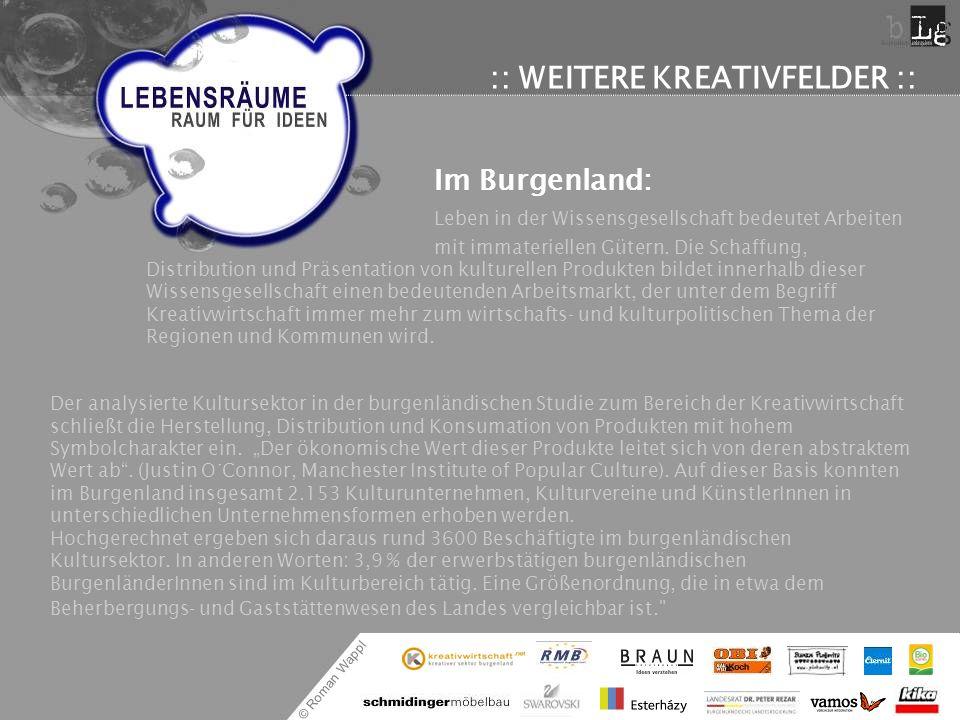 © Roman Wappl :: WEITERE KREATIVFELDER :: Im Burgenland: Leben in der Wissensgesellschaft bedeutet Arbeiten mit immateriellen Gütern. Die Schaffung, D