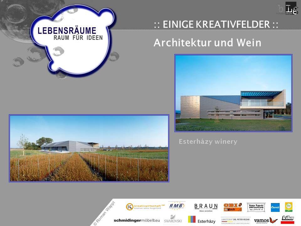© Roman Wappl :: EINIGE KREATIVFELDER :: Architektur und Wein Esterházy winery