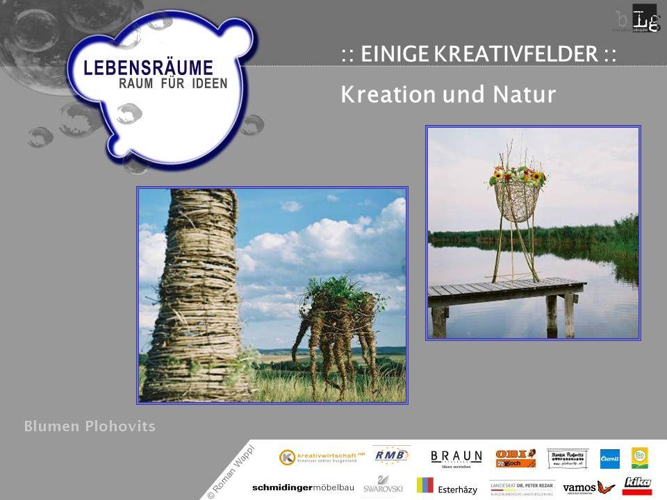 © Roman Wappl :: EINIGE KREATIVFELDER :: Kreation und Natur Blumen Plohovits