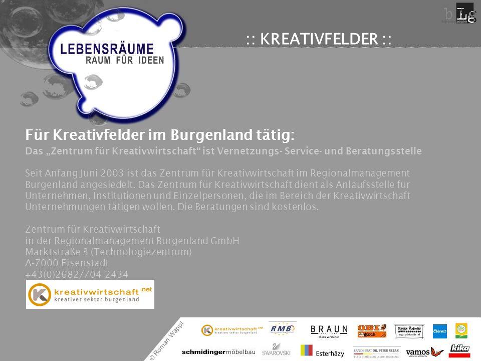 © Roman Wappl :: KREATIVFELDER :: Für Kreativfelder im Burgenland tätig: Das Zentrum für Kreativwirtschaft ist Vernetzungs- Service- und Beratungsstel