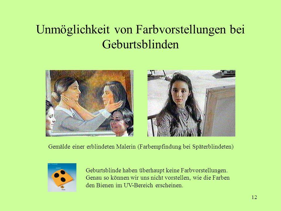 11 Literatur dazu: Dietmar Czycholl: Die Phantastischen Gesichtserscheinungen Vom Sehen bei geschlossenen Augen und seiner Erforschung. 2003, 154 Seit