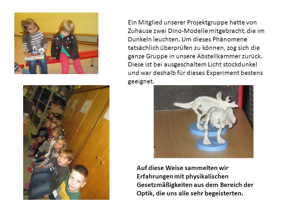 Ein Mitglied unserer Projektgruppe hatte von Zuhause zwei Dino-Modelle mitgebracht, die im Dunkeln leuchten. Um dieses Phänomene tatsächlich überprüfe
