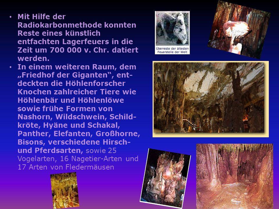 Mit Hilfe der Radiokarbonmethode konnten Reste eines künstlich entfachten Lagerfeuers in die Zeit um 700 000 v. Chr. datiert werden. In einem weiteren
