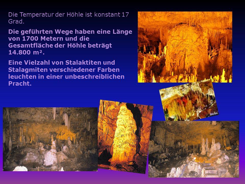 Die Temperatur der Höhle ist konstant 17 Grad. Die geführten Wege haben eine Länge von 1700 Metern und die Gesamtfläche der Höhle beträgt 14.800 m². E
