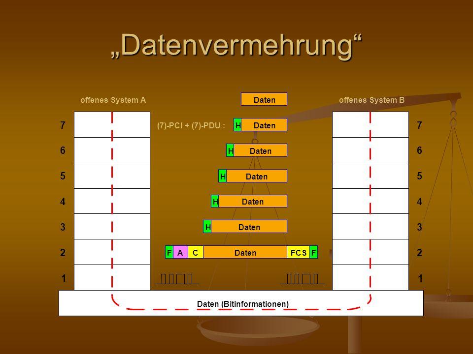 Datenvermehrung
