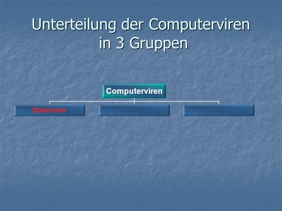 Unterteilung der Computerviren in 3 Gruppen Computerviren Dateiviren