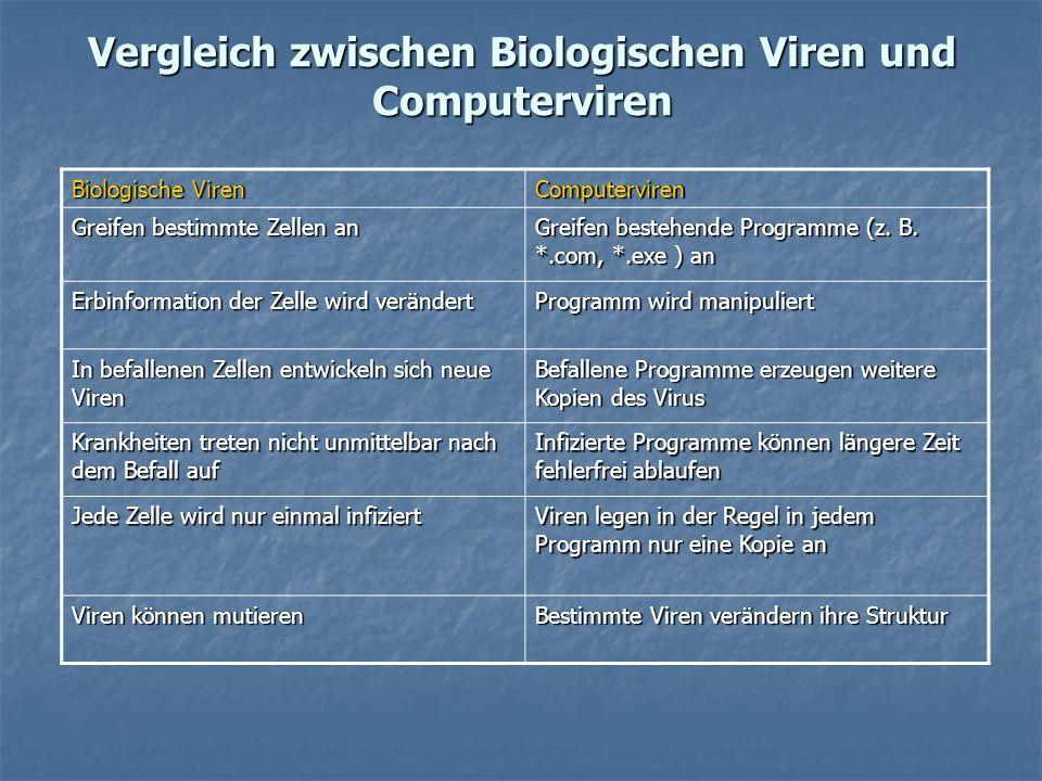 Vergleich zwischen Biologischen Viren und Computerviren Biologische Viren Computerviren Greifen bestimmte Zellen an Greifen bestehende Programme (z. B