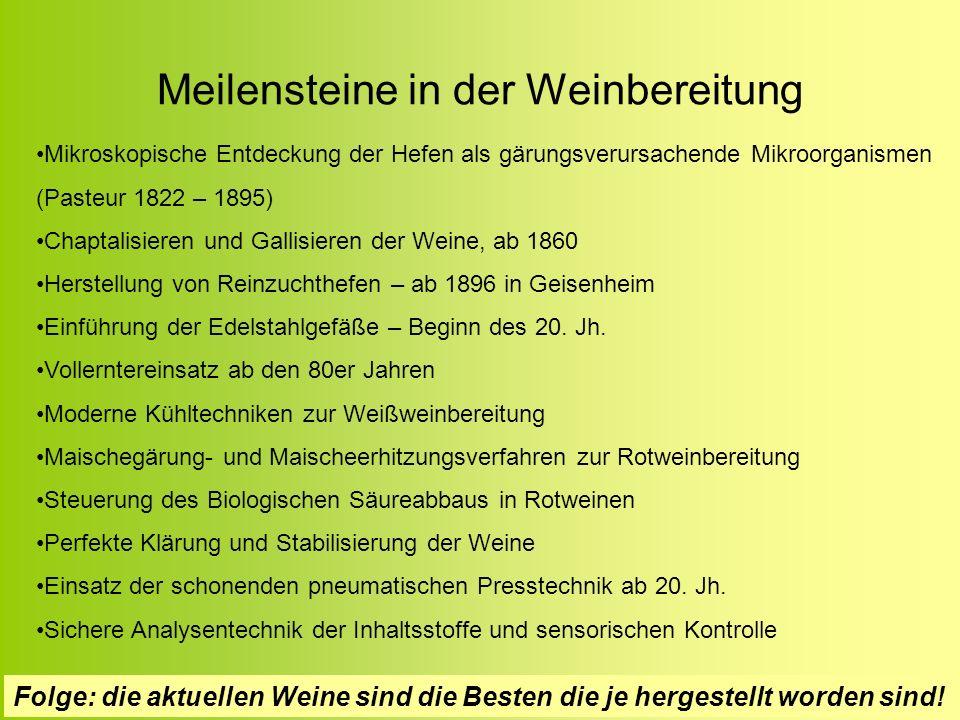 Meilensteine in der Weinbereitung Mikroskopische Entdeckung der Hefen als gärungsverursachende Mikroorganismen (Pasteur 1822 – 1895) Chaptalisieren un