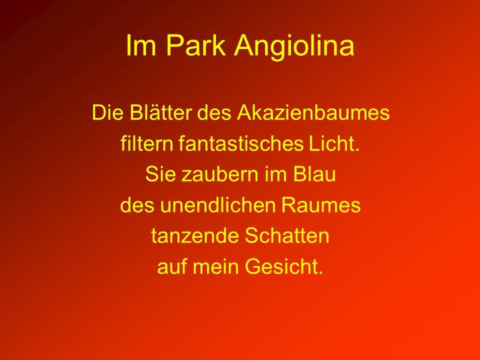 Im Park Angiolina Die Blätter des Akazienbaumes filtern fantastisches Licht. Sie zaubern im Blau des unendlichen Raumes tanzende Schatten auf mein Ges