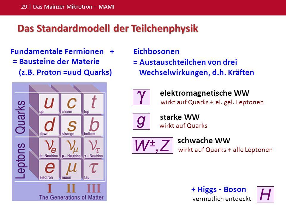 29 | Das Mainzer Mikrotron – MAMI Das Standardmodell der Teilchenphysik Eichbosonen = Austauschteilchen von drei Wechselwirkungen, d.h. Kräften Fundam